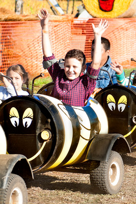 Bug Train at Bauman's Harvest Festival - Oregon