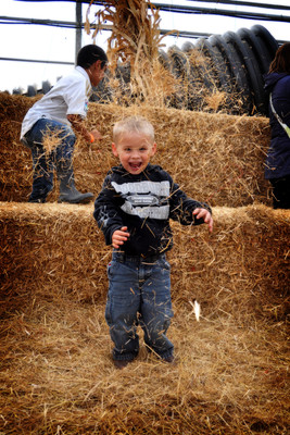 Cute kid playing with hay at Bauman's Harvest Festival - Oregon